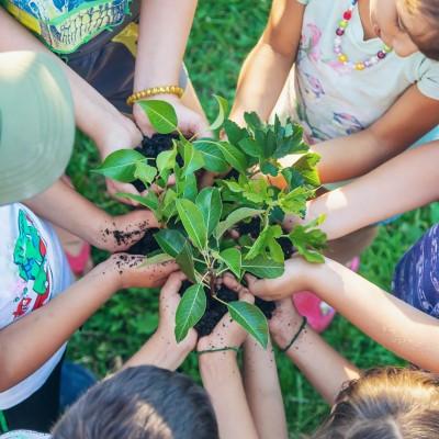 "Green School Bali named a ""2021 Best of Green Schools Awards"" winner image"